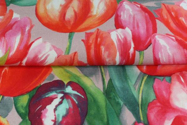 Baumwolle Tulpen